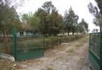 institutii 1
