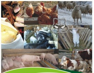 agric animale