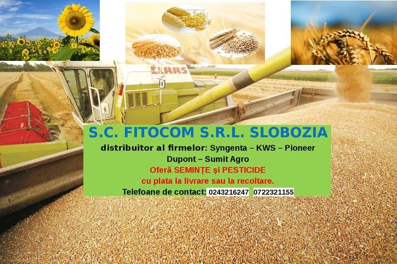fitocom