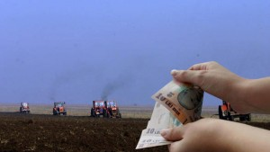 Agricultura SAPS