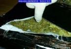 DIICOT Cannabis