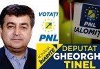 tinel-gheorghe-candidat