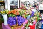 florarese 2