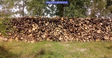 lemne amenda 1