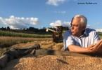 Agricultura DAIA