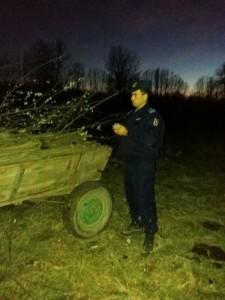 Jandarmerie lemne