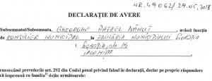 Rafael Declaratie 2