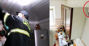 detectoare de gaze